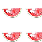 Watermelon watercolor summer illustration