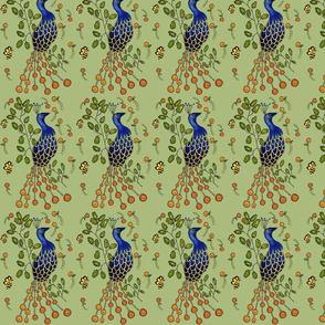 Pfau  Purdy Peacock Dim sum green
