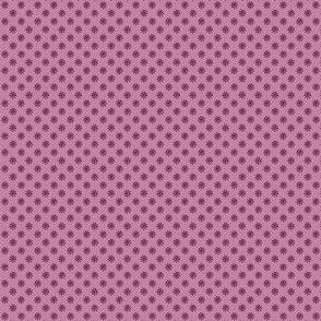 Ditsy sun plum