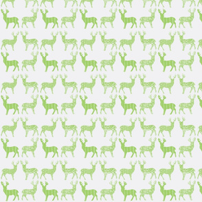 Lime Green Meadow Deer on White
