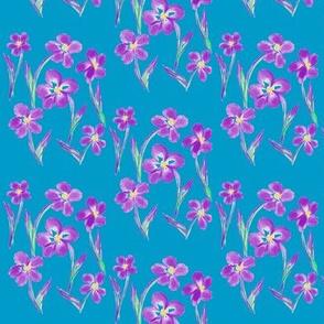 Dainty Meadow Flowers on Fields of Sky Blue