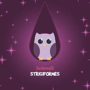 Latin Owl