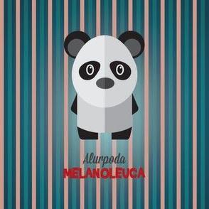 Latin Panda