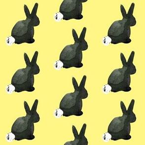 cestlaviv_bunny_Holly_tuxedo