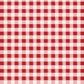 gingham red & pink
