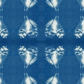 Small Feather Cyanotype
