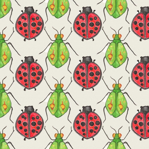 Fat Lady Beetles and Green Bugs