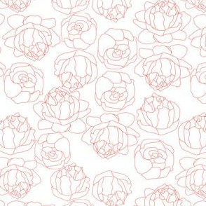 Coral Outlined Peonies on a Fresh White Background