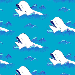 Happy Belugas in the blue ocean