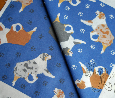 Small trotting Australian Shepherds and paw prints - dark blue