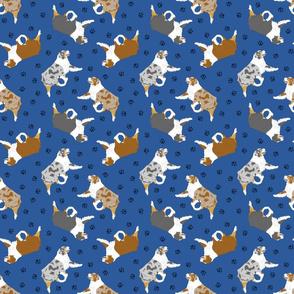 Small trotting Australian Shepherds and paw prints - dark blue