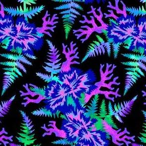 Coral Carnation - Dark blue/purple