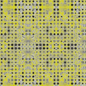 Dancing Dots and Spots on Bush Lemon