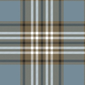 Tweedside hunting tartan, weathered