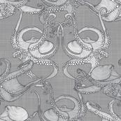 Cephalopod - Octopi smaller - Light