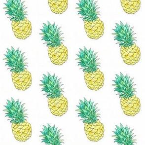 watercolour pineapple