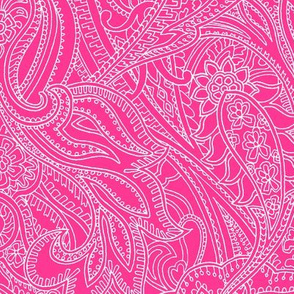 Paisley-Power-paisley-lace-mirror-outline-pink-white-print-fabric-design