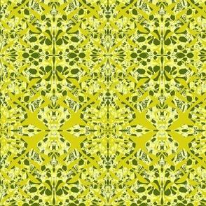 Bush Lemons with a Twist of Lime
