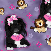 Shihtzu Black - Lion