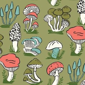 mushroom // mushrooms kids morel woodland forest nature walk botanical botanics