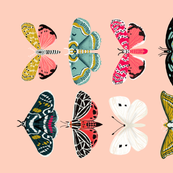 tea towel // moths lepidoptery butterflies cute girls pink vintage botanicals