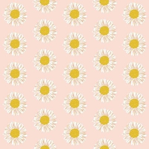 daisies daisy soft pink blush girls sweet flowers florals kids baby girl nursery