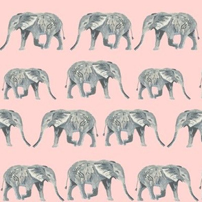 elephants watercolor watercolours animals animal cute elephants