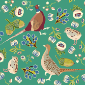 I spy animals coordinate pheasant on green