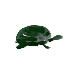cestlaviv_pals_turtle_white