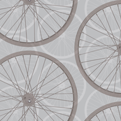 Bike Wheels in Gray