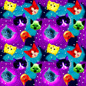Rainbow_Galaxy_Cats