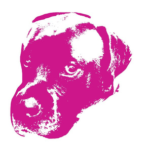 English Mastiff Pop Art