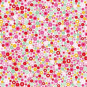 Colorful abstract summer daisies sweet flowers garden pink red
