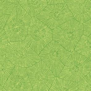 large petoskey pattern in spring green