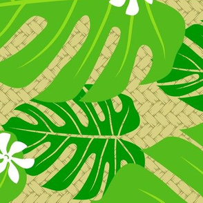 Monstera Tiare Palm Weave horizontal