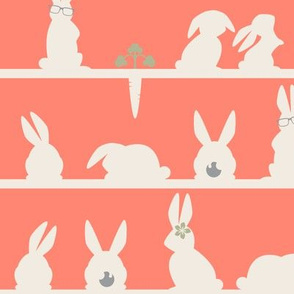 Rabbits lines - Rabbit relatives COLLECTION