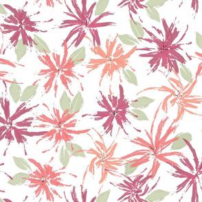 Hibiscus, Apricot