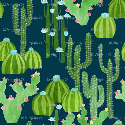 Cactus_with_flowers_at_night_2-01_preview