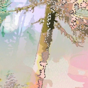moonlit spruce