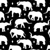 Geo Elephants I on Black