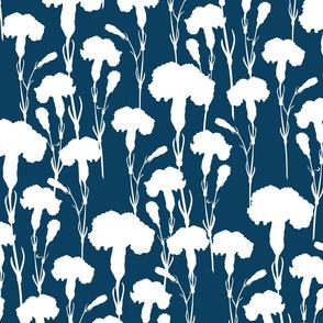 white_carnation_on_blue