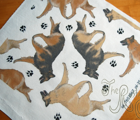 Trotting Belgian Tervuren and paw prints - white