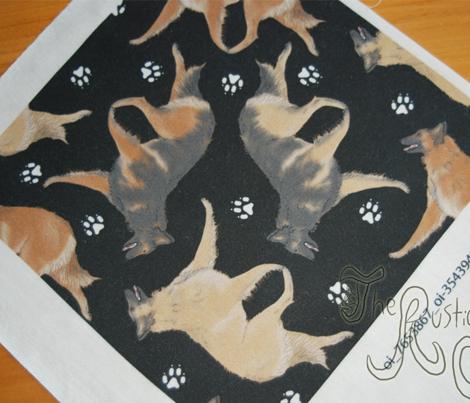 Trotting Belgian Tervuren and paw prints - black