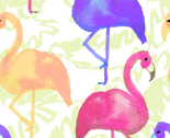 Flamingosrpt_thumb