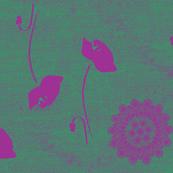 Poppy Purpura
