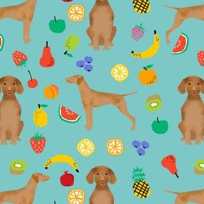 vizsla dog fruit summer cute fun pet dog vizslas dog fabric