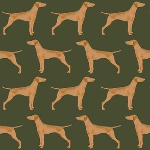 vizsla dog dogs vizslas dog fabric cute pet dog fabrics