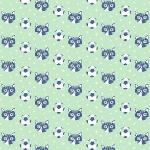 Surprise fotboll