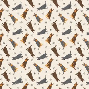 Tiny Australian Kelpies - tan