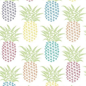 rainbow pi-napple pineapple